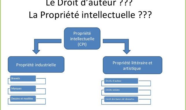 Propriété intellectuelle - industrielle - litéraire et artistique