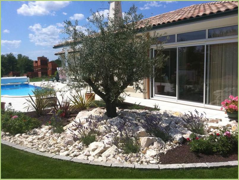 Contour de piscine en moquette de pierre de marbre couleur rosa corallo