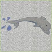 Motif Flipper